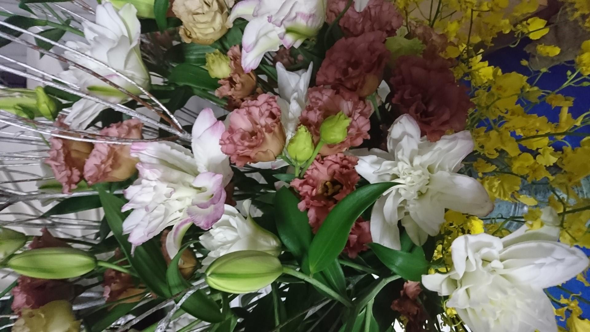 《季之風》新種のオリエンタルユリが初入荷(中央葬祭社)