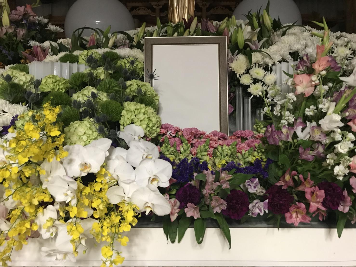 《季之風》紫陽花が入荷しました(中央葬祭社)